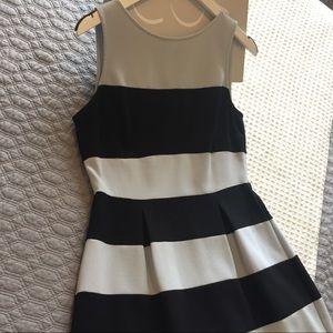 Ann Taylor LOFT, Fit & Flare Dress